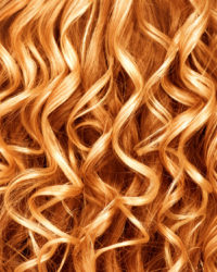 Curly ginger hair closeup. Permed red hair background